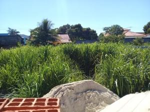 Itapeba, Centro