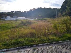 Caxito, Centro
